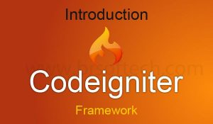 codeigniter image