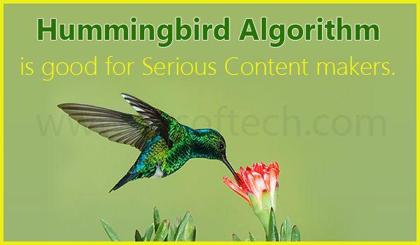 Hummingbird Algorithm Good for Serious Content Makers