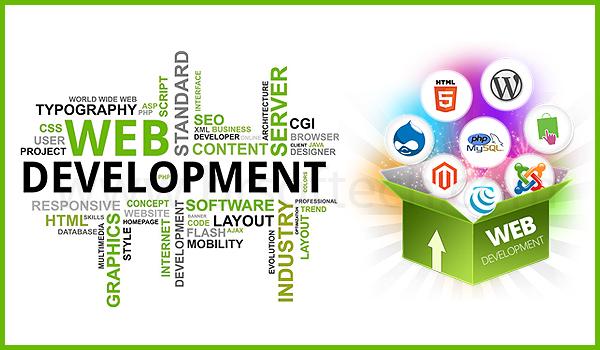 Starting a web development company