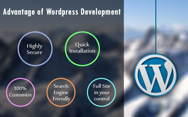 Top 5 Advantage of using WordPress for Your website