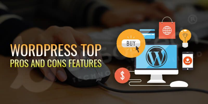 2019 WordPress Review Is WordPress Right for You | BR Softech