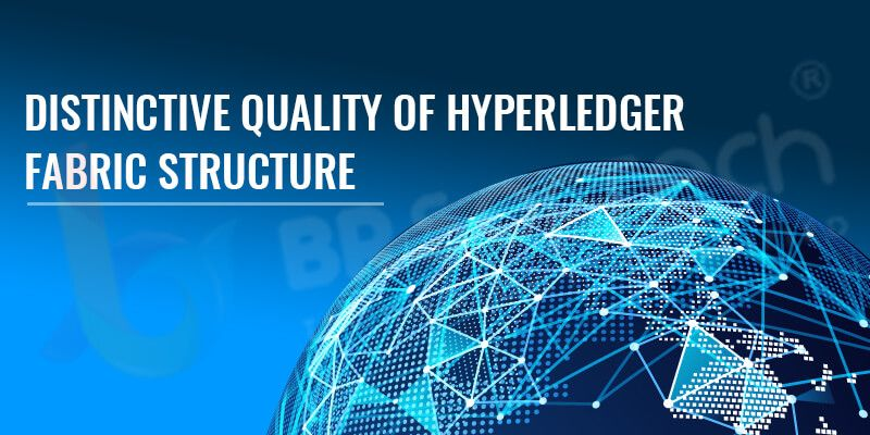 Everything Should Know About Hyperledger Fabric Blockchain