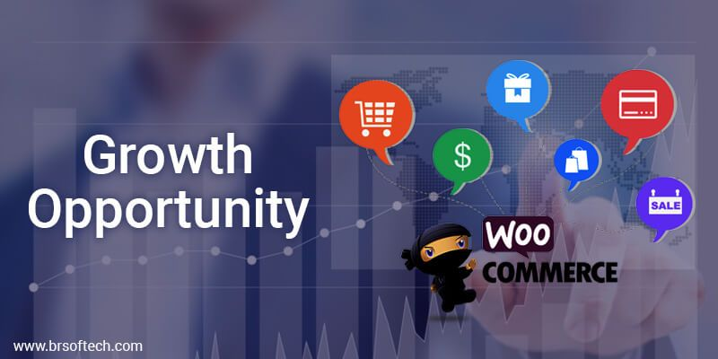 Growth-Opportunity