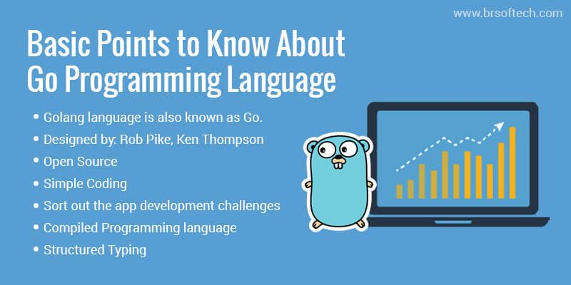 Basic Points to Know About Go Programming Language