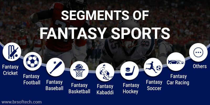 Segments of Fantasy Sports
