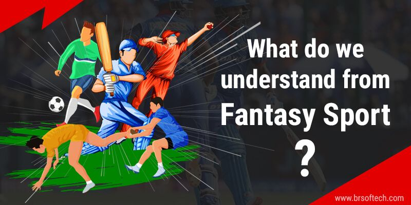 What do we understand from Fantasy Sport